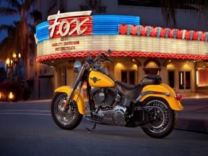 "Imponente motocicleta Harley Davidson modelo ""FatBoy"""