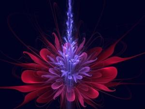 Postal: Extraña flor
