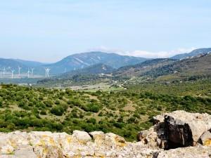 Campo de Puertollano (España)