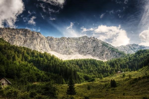 Montañas y bosque