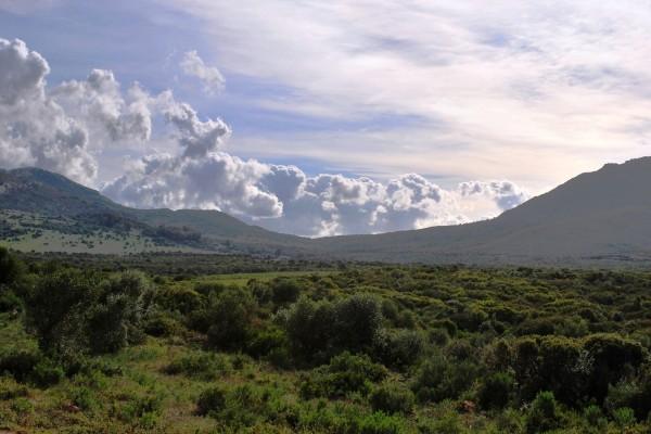 Sierra de Puertollano (España)