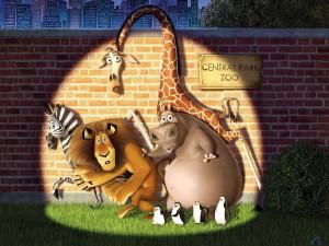 Postal: Madagascar, escapando del zoo