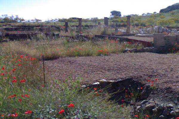 Parte de los restos encontrados de la ciudad de Sisapo