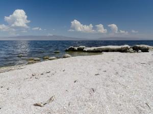Mar Salton
