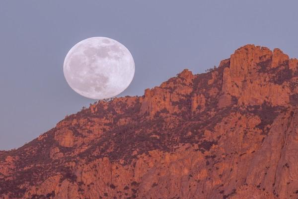 Perfecta luna llena