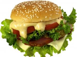 Hamburguesa con salsa mayonesa