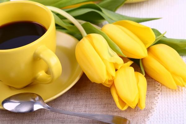 Tulipanes y una taza de café
