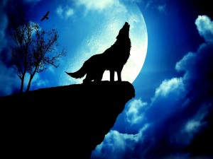 Postal: Un lobo en luna llena