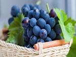 Uvas en una canasta