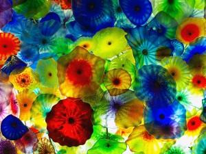 Sinfonía de colores