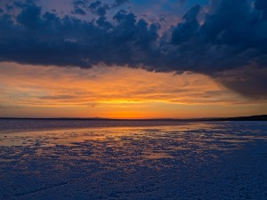 Sombras sobre la playa