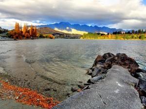 Costa cerca de Frankton en Nueva Zelanda