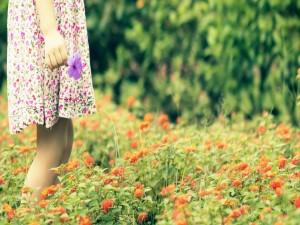 Postal: Caminando entre las flores