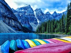 Canoas de colores en un bello entorno