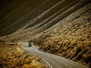 Curvas en el camino