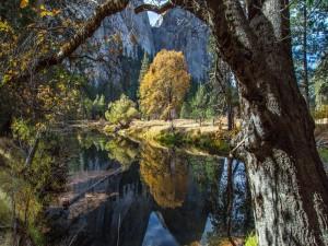 Postal: Los colores del otoño