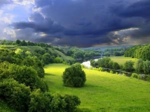 Río en una zona muy verde