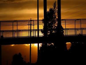 Un puente tapando al sol