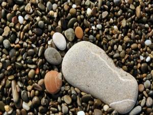 Piedras formando la huella de un pié