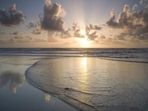 El sol en la playa