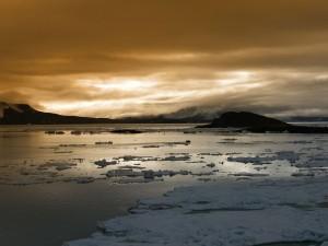 Placas de hielo en el agua