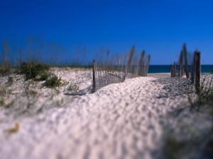 Postal: Hacia la playa