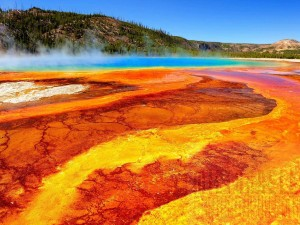 Géiser en el Parque Nacional de Yellowstone