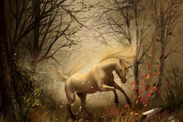 Unicornio en el bosque