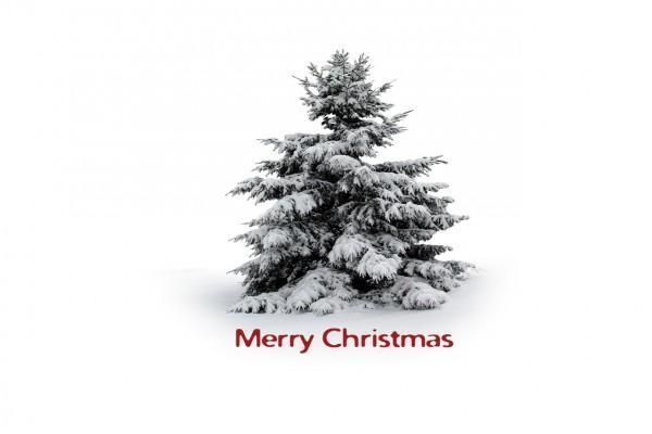 """Árbol nevado y """"Merry Christmas"""""""