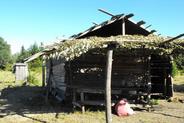 Pequeñas chozas al sur de Chile