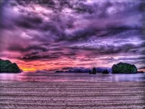 Postal: Paisaje en colores lilas