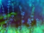 Telaraña entre flores azules