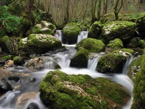 El agua del río que fluye entre las rocas