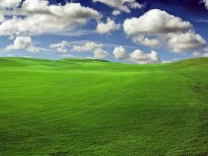 Paisaje de hierba verde y nubes en el cielo