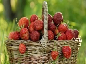 Postal: Cesta con fresas silvestres