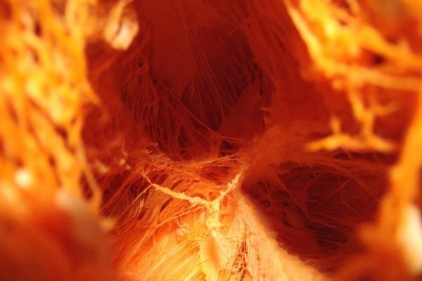 El interior de una calabaza