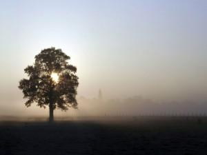 Postal: La niebla se acerca