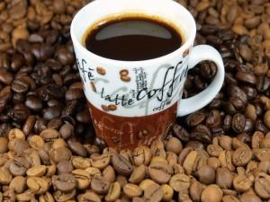 Mezcla de café