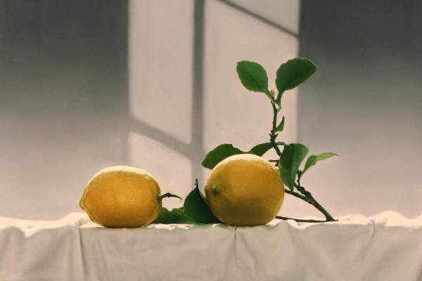 Limones con la rama