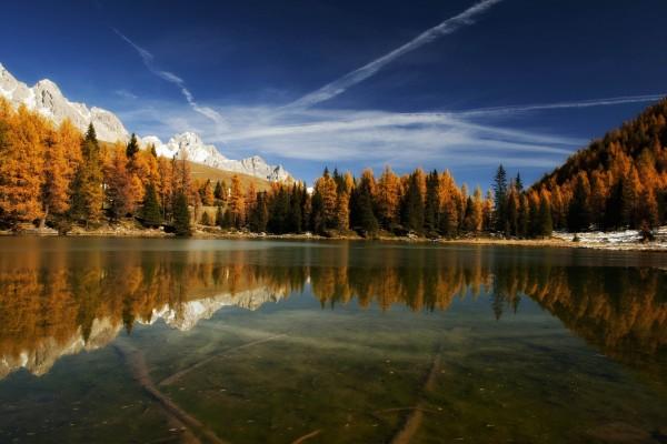 Árboles otoñales alrededor del lago