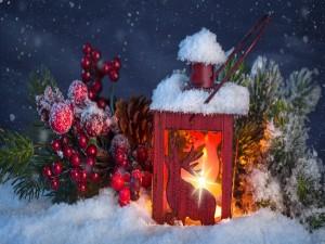 Lámpara decorativa y adornos para festejar Navidad y Año Nuevo