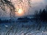 La soledad de una noche fría