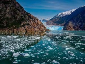 Postal: Glaciar Bay (Alaska)
