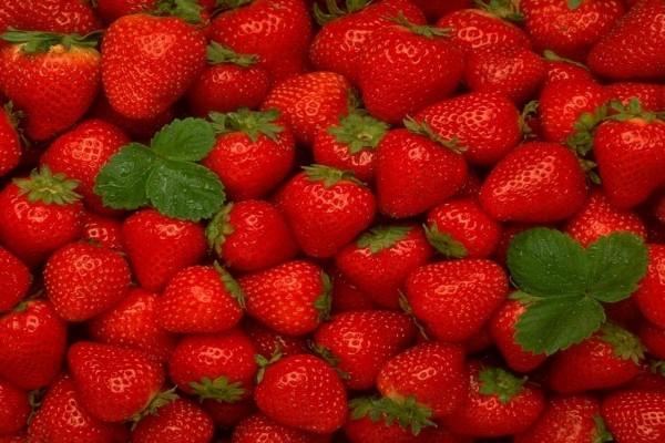 Deliciosas fresas
