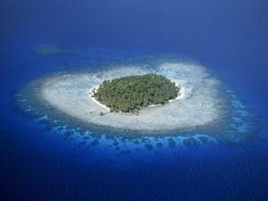 Postal: Isla con palmeras rodeada de arrecifes de coral