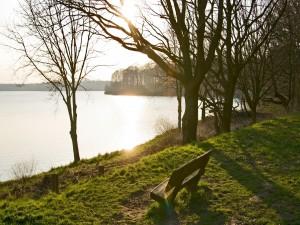 Postal: Asiento para contemplar el lago