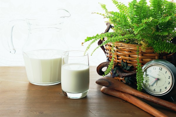 Vaso de leche al lado de la planta