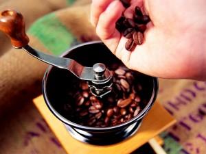 Moliendo el grano del café
