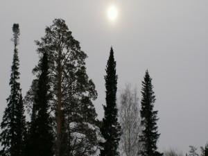El sol en lo alto
