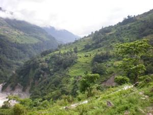 Ladera tallada del Himalaya